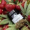 CBD Blüte Erdbeerli Erdbeeren (CBD Gehalt kann abweichen)