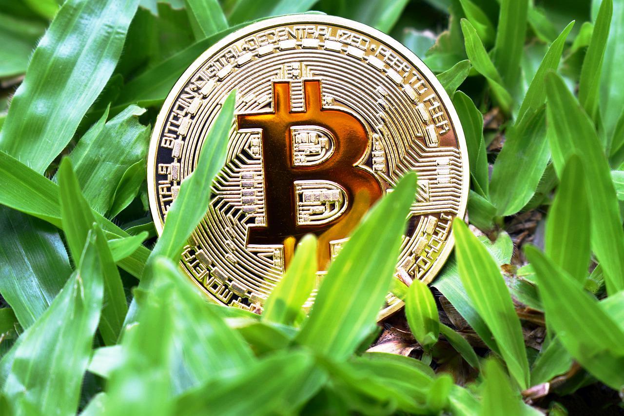 Bitcoin CBD bezahlen